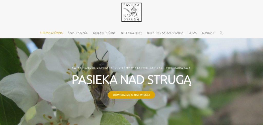 pasiekanadstruga.waw.pl